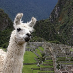 Friendly faces: Peru is taking steps to improve its business climate and overcome its strict and bureaucratic image.