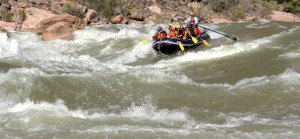 Thrills and spills: Ravi Bishnoi battles the water in the Grand Canyon.
