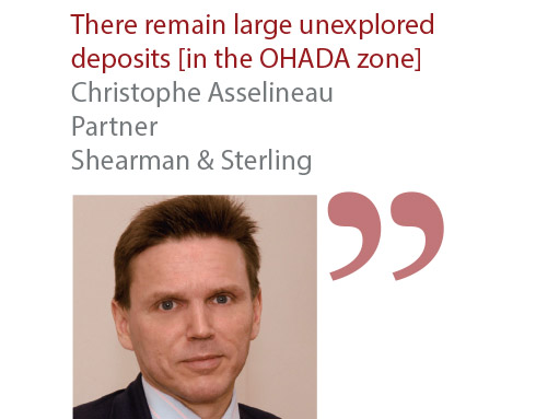 Christophe Asselineau Partner Shearman & Sterling