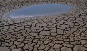 相关部门关注外国公司在中国造成的环境损害,预计将有大额赔偿。