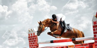A tight rein: In-house counsel predictions for Year of the Horse