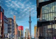 Tokyo_city_crossing