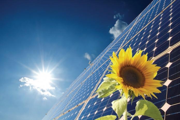 solar panel HSA Advocates
