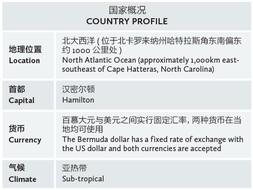 BeesMont-PP-Country-Profile-table