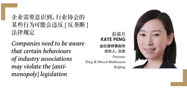 彭荷月 Kate Peng 金杜律师事务所 合伙人,北京 Partner King & Wood Mallesons Beijing