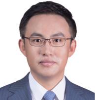 王立宏 WANG LIHONG 大成律师事务所高级合伙人 Senior Partner Dentons