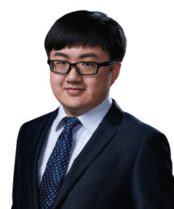 CHRIS WANG Associate MHP Law Firm