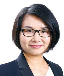 胡波安杰律师事务所律师外商投资法