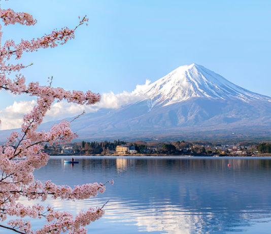 日本の関心を引き付ける代替投資 Japan-Cayman-Islands-fund-lawyer-alternative-investments-Nick-Harrold-Maples-Group
