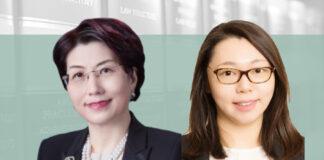 王霁虹 赵蕙骐 中伦律师事务所 国家援助