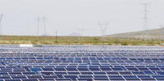 solar farm renewable energy