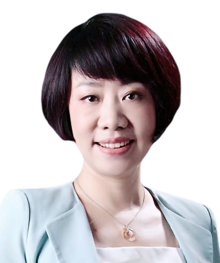 Li Jing DOCVIT Law Firm non-performing assets