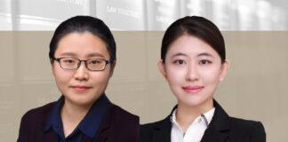 Wang Yaxi and Zhu Mengxuan, Yuanhe Partners