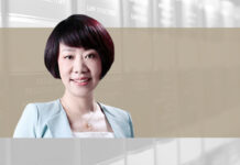 Li Jing DOCVIT Law Firm non-performing assets