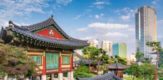 Chang Tsi seoul korea