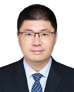陈卫, David Chen, Managing partner, DOCVIT Law Firm