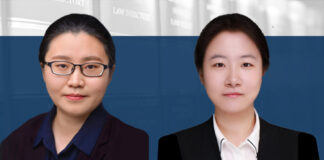 Choosing between provisional injunction and partial judgment, 如何选择临时禁令与先行判决的救济模式, Wang Yaxi and Wu Yue