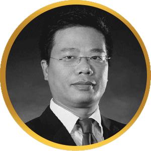 Nguyen Dang Viet Bizconsult