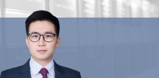 Bad-faith capital increases and remedies for minority shareholders, 有限公司大股东恶意增资的认定及小股东的救济, Wang Zheng, ETR Law Firm_