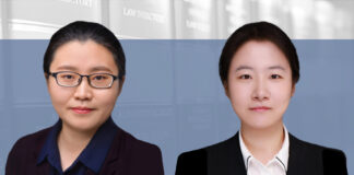 Should DNS providers halt services upon infringement complaints_, 接到侵权投诉后,域名解析服务该不该停?, Wang Yaxi and Wu Yue, Yuanhe Partners