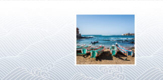 cover-image,-Regional-perspective-of-Senegal-and-Ivory-Coast