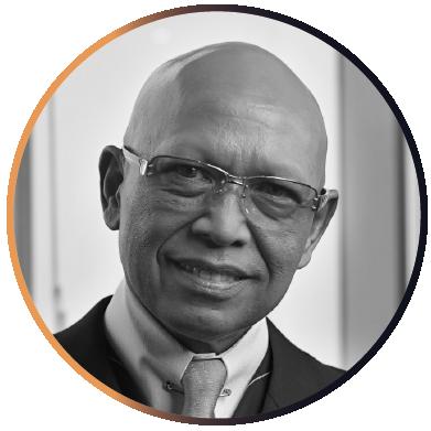 Mohamed Idwan Ganie, Lubis Ganie Surowidjojo