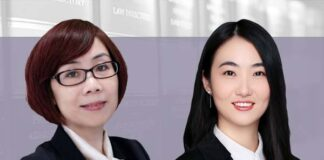 Investment and M&A modes in the senior care industry, 养老产业投资并购模式简析, Cindy Hu and Yang Jiaxin, East & Concord Partners