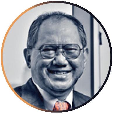 Arief Tarunakarya Surowidjojo, Lubis Ganie Surowidjojo