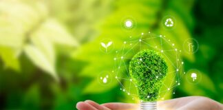 Industry, government align on green energy goals
