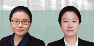 hiQ v LinkedIn- The legal boundary of public data scraping, 公开数据抓取行为的合法性边界, Wang Yaxi and Wu Yue, Yuanhe Partners